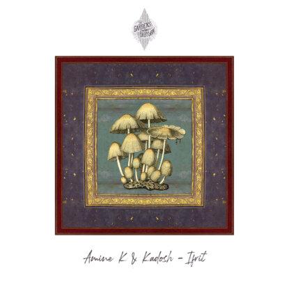 Amine K, Kadosh, ifrit EP, release, the gardens of babylon, tgob